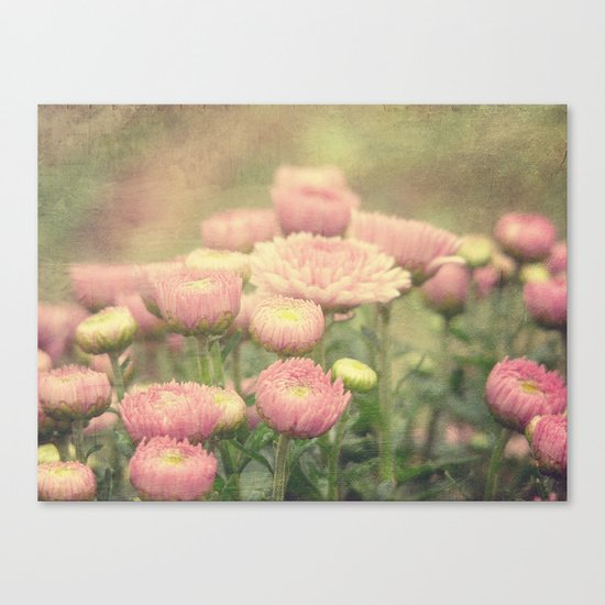 Pink Painterly Mums Canvas Print