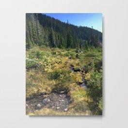 Brandywine meadows Metal Print