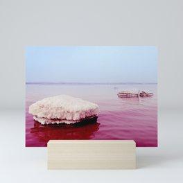Pink Salt Lake Mini Art Print