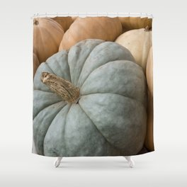 Blue Pumpkin and Squash Close up Shower Curtain