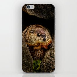 Groundhog Day iPhone Skin