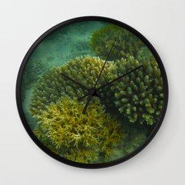 Cool Coral Wall Clock