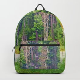 Within the Polder Waters Backpack