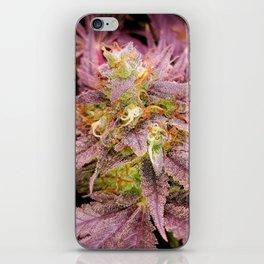 Passionately Purple iPhone Skin