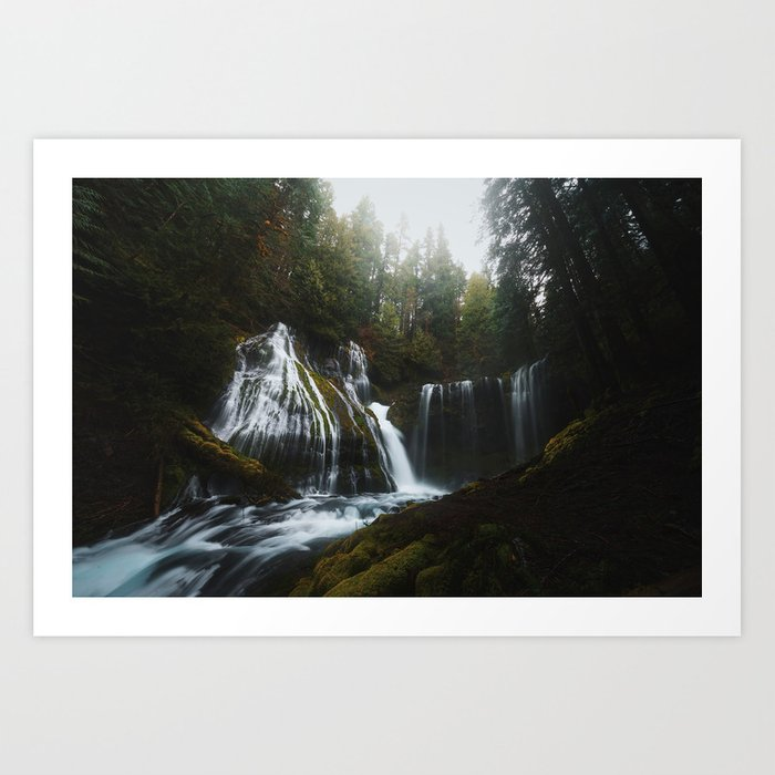 Forest Oasis Art Print