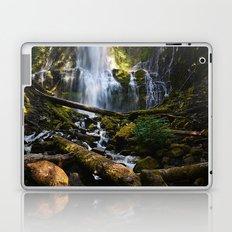Lower Proxy Falls Laptop & iPad Skin