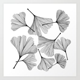 Gingko black and white line drawing Art Print