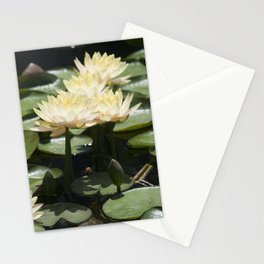 Longwood Gardens - Spring Series 276 Stationery Cards