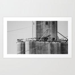 Flock of blackbirds Art Print