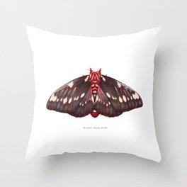 Splendid Royal Moth (Citheronia splendens) Throw Pillow
