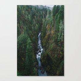 Skokomish River Canvas Print