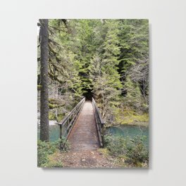 Brice Creek, trail, hiking, Oregon, bridge Metal Print