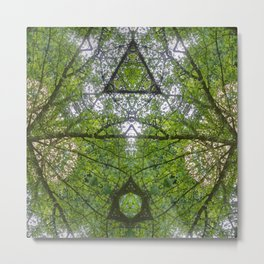 Woodland Canopy Metal Print
