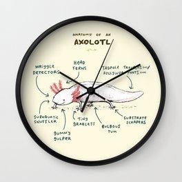 Anatomy of an Axolotl Wall Clock