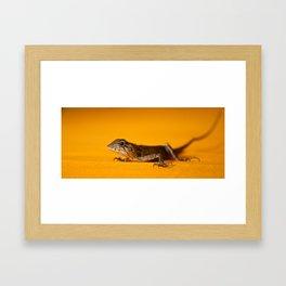Pocket Dragon Framed Art Print