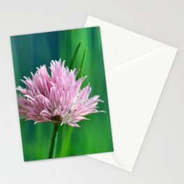 Allium pink 076 Stationery Cards