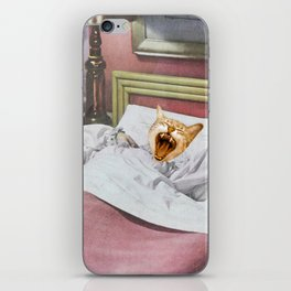 Catnap iPhone Skin