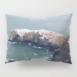Bird island 2 Pillow Sham