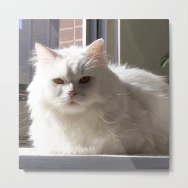 Cat In The House Metal Print