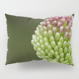 Drumstick Allium Pillow Sham