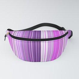 Unicorn Stripes Fanny Pack