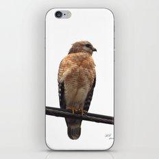 Falcon Wire iPhone & iPod Skin