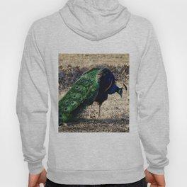 Peacock 2 Hoody