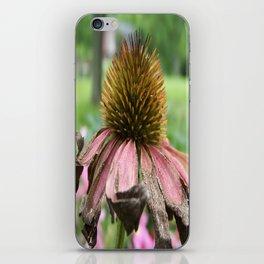 Wendy Wendell iPhone Skin