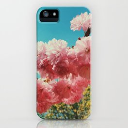 Spring Flowers in D.C. iPhone Case