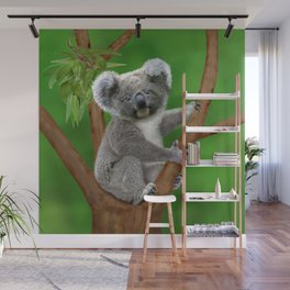 Blue-eyed Baby Koala Bear Wall Mural