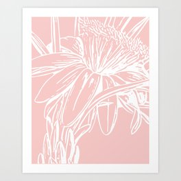 Simple Pink Botanical Line Drawing Art Print