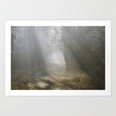 Sunlight through mist along a remote country track. Norfolk, UK. Art Print