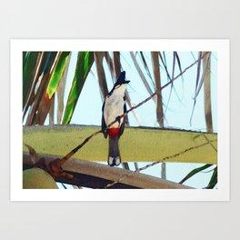 Mauritius tropical watercolor print / Mauritian bulbul bird Art Print