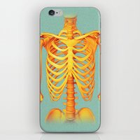 skeleton iPhone & iPod Skins featuring Skeleton by ShannonPosedenti