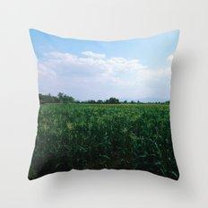Eyes On Horizon Throw Pillow