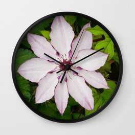 Pale Pink Clematis Wall Clock