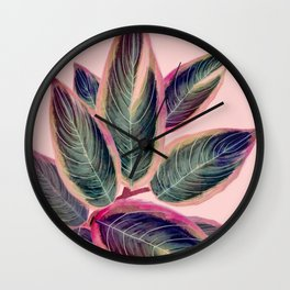 Pink Plant Ficus Wall Clock