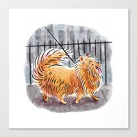 pomeranian Canvas Prints featuring Pomeranian  by Renee Kurilla