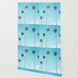 Tropical Miami Palm Trees Wallpaper