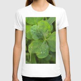 Magical Clover - Lucky Irish Clover T-shirt
