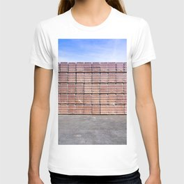 Another Brick For The Wall T-shirt