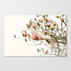 Portraits of Spring - II Canvas Print