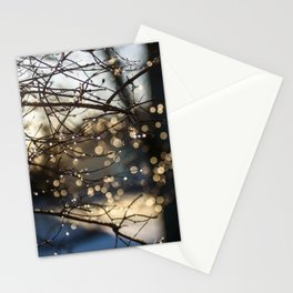 Raindrops on branch of tree. Beautiful bokeh. Stationery Cards