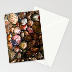 Shell 1 Stationery Cards