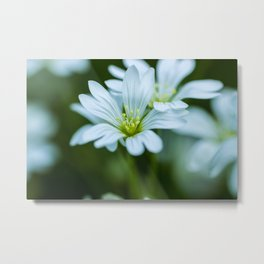 flower love Metal Print