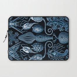 Ernst Haeckel Amphoridea Sea Life Laptop Sleeve