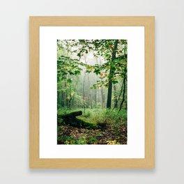 Cast Your Spell On Me Framed Art Print