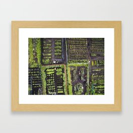 Gardening From Above     Drone Photography Framed Art Print