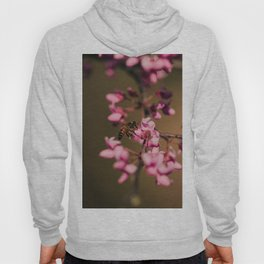Bee on Redbud Hoody