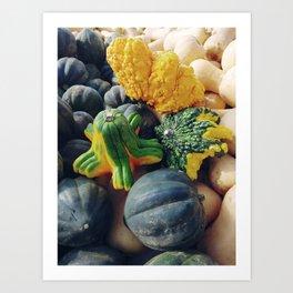 Assorted Pumpkins and Squash Art Print